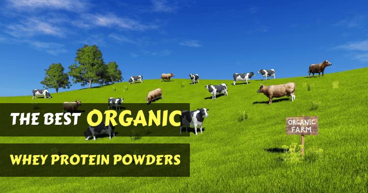 best-organic-whey-protein-powders