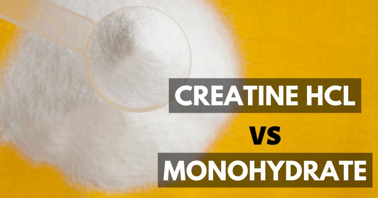 creatine hcl vs creatine monohydrate