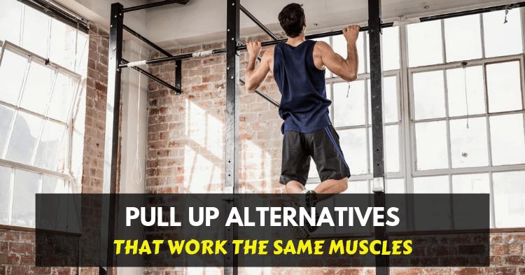 pull up alternative exercises