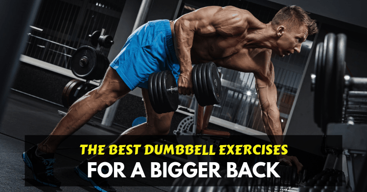 dumbbell back exercises one arm row