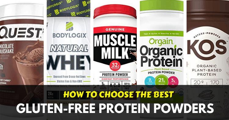 best gluten free protein powders