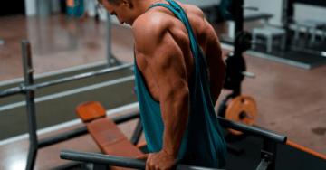 dip bar exercises for beginners