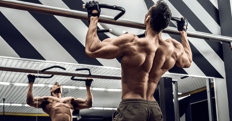 compound back exercises